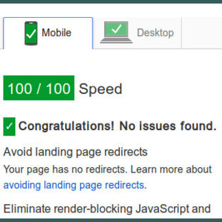100 Percent Google Pagespeed